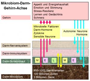 pathogene keime im stuhl