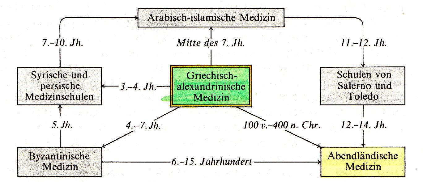 Dr. med. univ. Alois Dengg - Arzt für Allgemeinmedizin, Additivfach ...